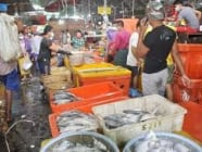 ကိုဗစ်ကာလအတွင်း ရွှေပိတောက်ငါးဈေးကြီး၌ ရေထွက်ကုန်ပစ္စည်းများ အရောင်းအဝယ်ကောင်း